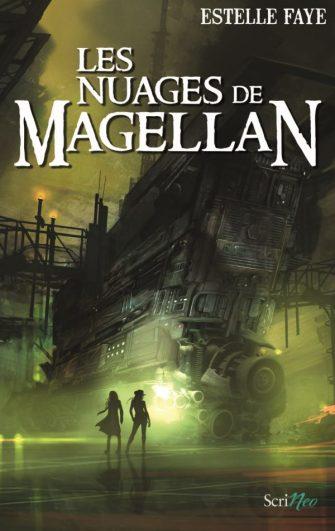Les-Nuages-de-Magellan_recadre_paint_14-09-600x952