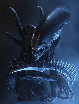 alien-covenant-photo-xenomorphe-1026667
